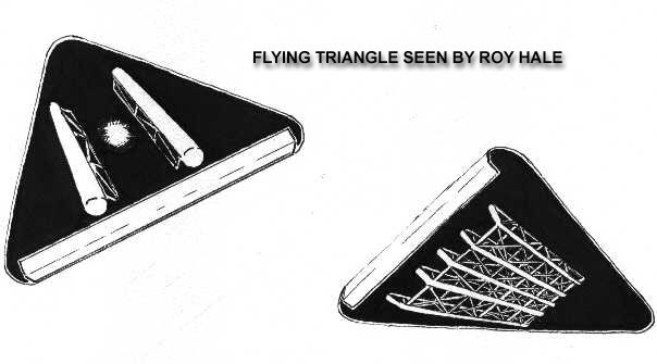 Flying Triangle As Seen By Roy Hale